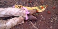 Girl found amongst dead bodies after village massacre