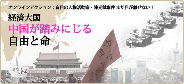 china_201206_03_chen_guangcheng_banner.jpg
