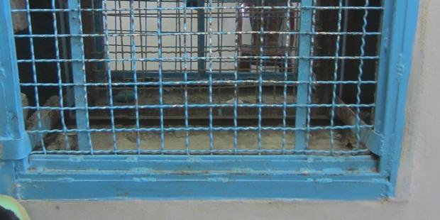 ガザの拘置所には多くの死刑囚が収容されている。(C) Amnesty International